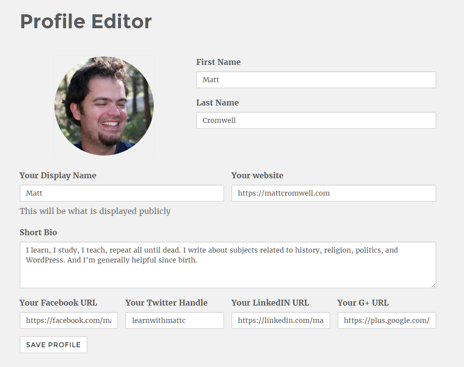 Final Profile Editor Screenshot