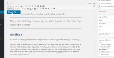 Dynamic TinyMCE Editor Styles in WordPress