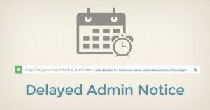 Delayed Admin Notice